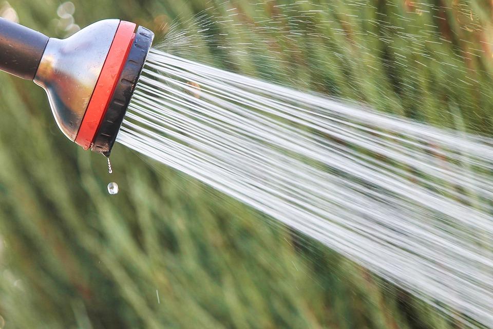 Sprchová hlavice